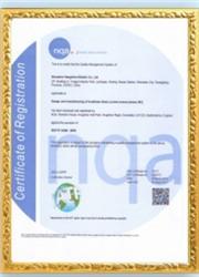 TS16949證書英文版